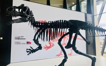 Un squelette d'Allosaure en Gare de Lyon Saint-Exupéry